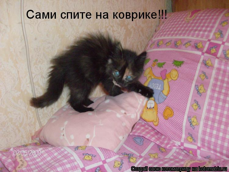 Котоматрица: Сами спите на коврике!!!