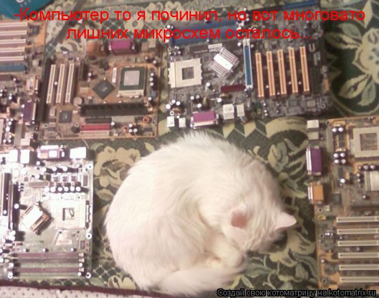 Котоматрица: -Компьютер то я починил, но вот многовато лишних микросхем осталось...