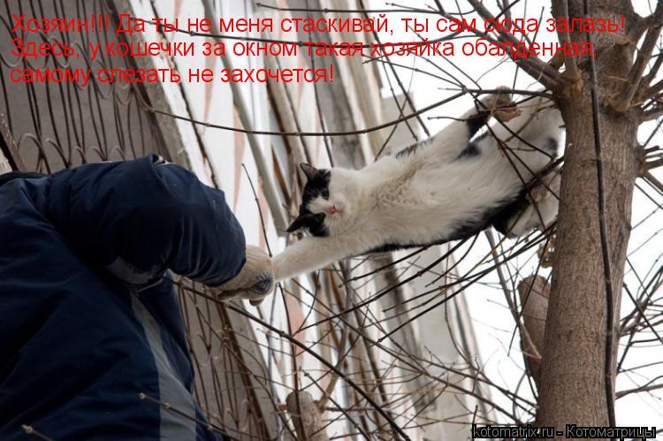 Котоматрица: Хозяин!!! Да ты не меня стаскивай, ты сам сюда залазь! Здесь, у кошечки за окном такая хозяйка обалденная, самому слезать не захочется!