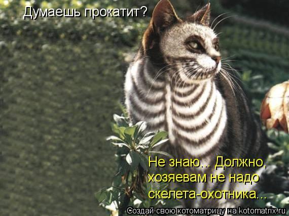 Котоматрица: Думаешь прокатит? Не знаю... Должно, хозяевам не надо скелета-охотника...