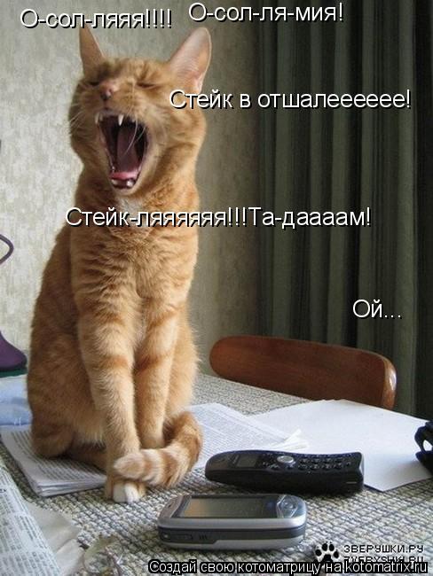 Котоматрица: О-сол-ляяя!!!! О-сол-ля-мия! Стейк в отшалееееее! Стейк-ляяяяяя!!!Та-даааам! Ой...