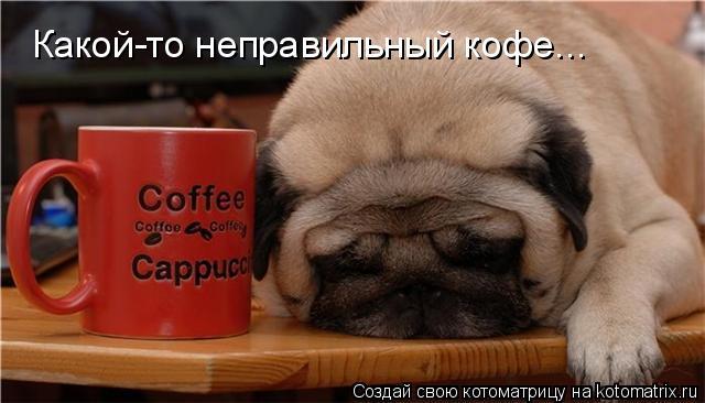Котоматрица: Какой-то неправильный кофе...