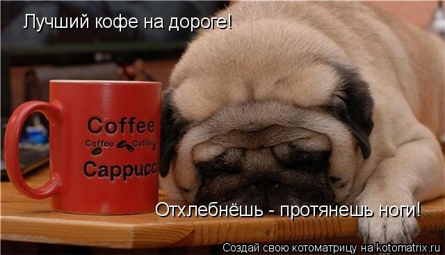 Котоматрица: Лучший кофе на дороге! Отхлебнёшь - протянешь ноги!