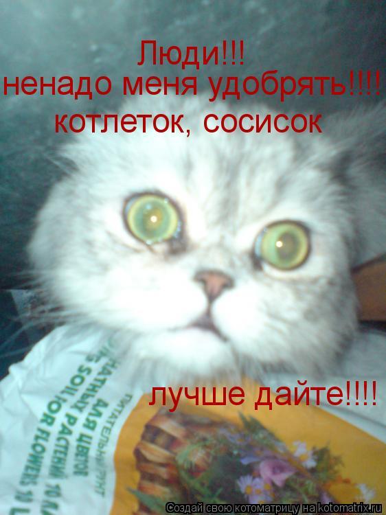 Котоматрица: Люди!!! ненадо меня удобрять!!!! котлеток, сосисок  лучше дайте!!!!