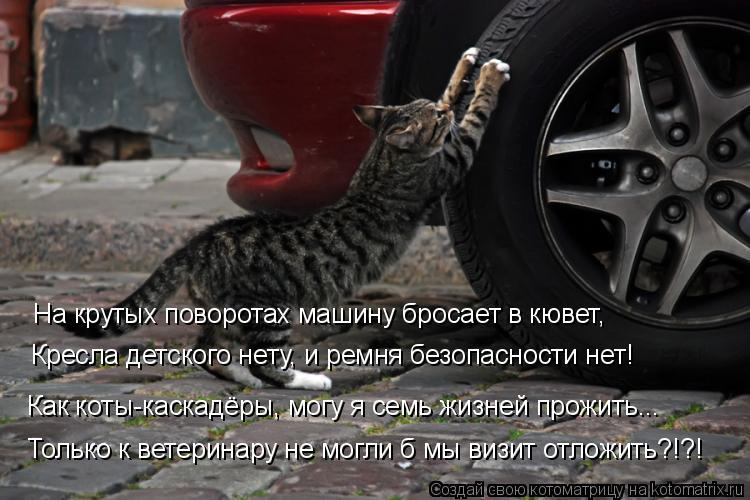 Котоматрица: Только к ветеринару не могли б мы визит отложить?!?! Как коты-каскадёры, могу я семь жизней прожить... Кресла детского нету, и ремня безопаснос