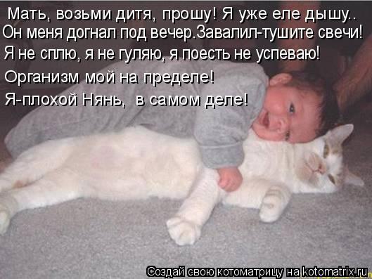 Котоматрица: Мать, возьми дитя, прошу! Я уже еле дышу.. Он меня догнал под вечер.Завалил-тушите свечи! Я не сплю, я не гуляю, я поесть не успеваю! Организм мо