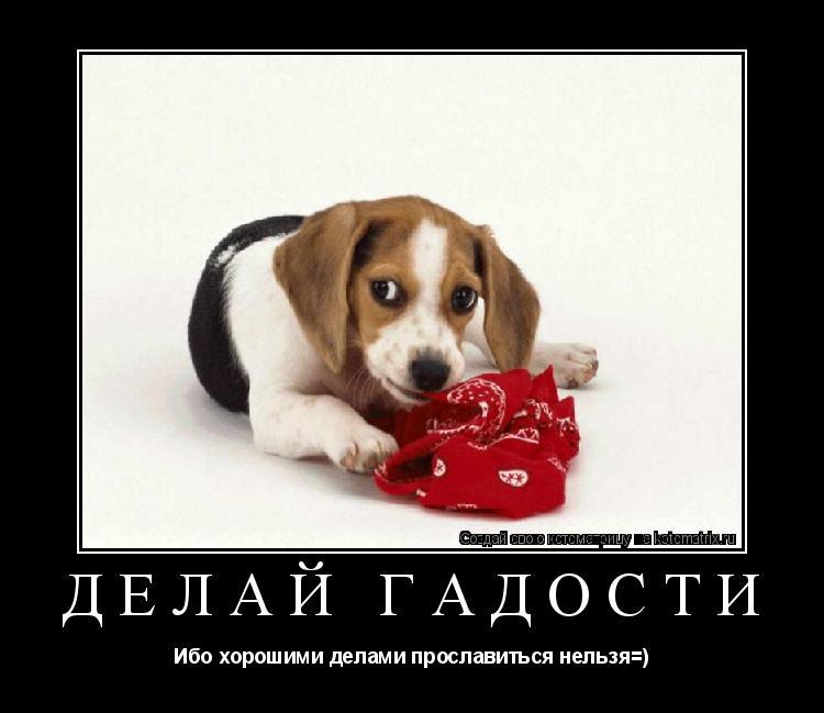 Котоматрица: ДЕЛАЙ ГАДОСТИ Ибо хорошими делами прославиться нельзя=)