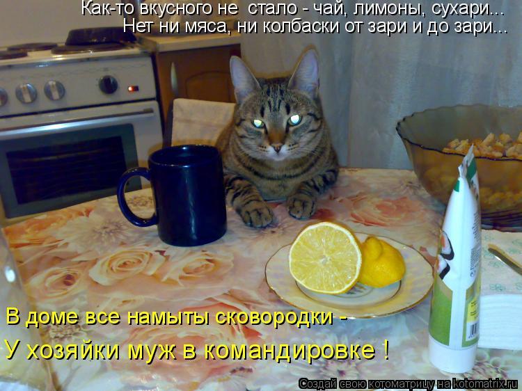 Котоматрица: Как-то вкусного не  стало - чай, лимоны, сухари... Нет ни мяса, ни колбаски от зари и до зари... В доме все намыты сковородки - У хозяйки муж в кома