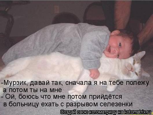 Котоматрица: -Мурзик, давай так, сначала я на тебе полежу а потом ты на мне - Ой, боюсь что мне потом прийдётся  в больницу ехать с разрывом селезенки