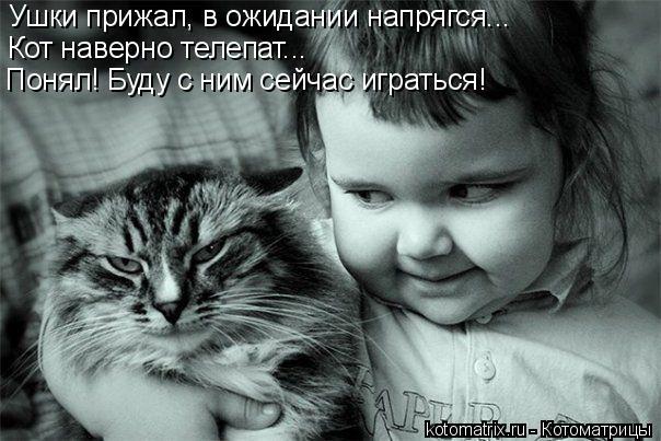Котоматрица: Ушки прижал, в ожидании напрягся... Кот наверно телепат... Понял! Буду с ним сейчас играться!