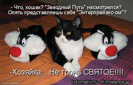 """Котоматрица: - Что, кошак? """"Звездный Путь"""" насмотрелся? Опять представляешь себя """"Энтерпрайзис-ом""""? -Хозяйка... Не тронь СВЯТОЕ!!!!"""