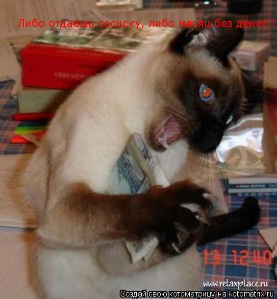 Котоматрица: Либо отдаёшь сосиску, либо месяц без денег!!!