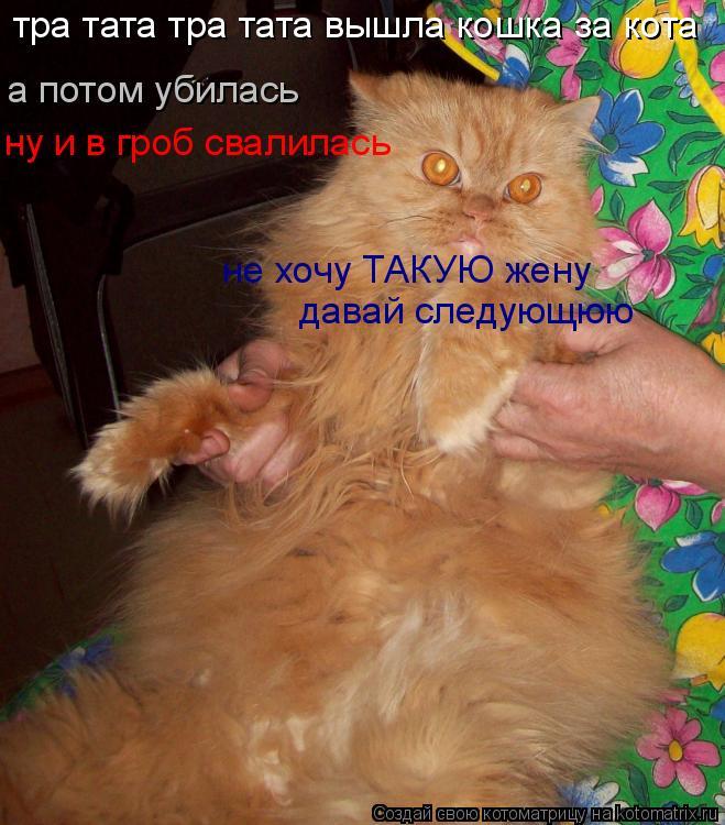 Котоматрица: тра тата тра тата вышла кошка за кота а потом убилась ну и в гроб свалилась не хочу ТАКУЮ жену давай следующюю