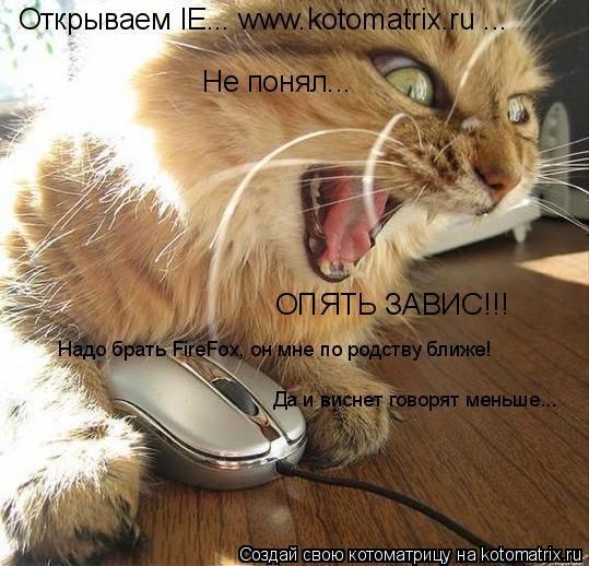 Котоматрица: Открываем IE... www.kotomatrix.ru ... Не понял... ОПЯТЬ ЗАВИС!!! Надо брать FireFox, он мне по родству ближе! Да и виснет говорят меньше...