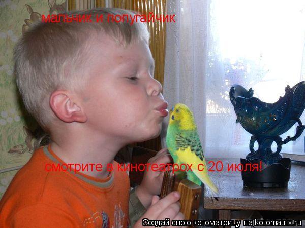 Котоматрица: мальчик и попугайчик смотрите в кинотеатрох с 20 июля!