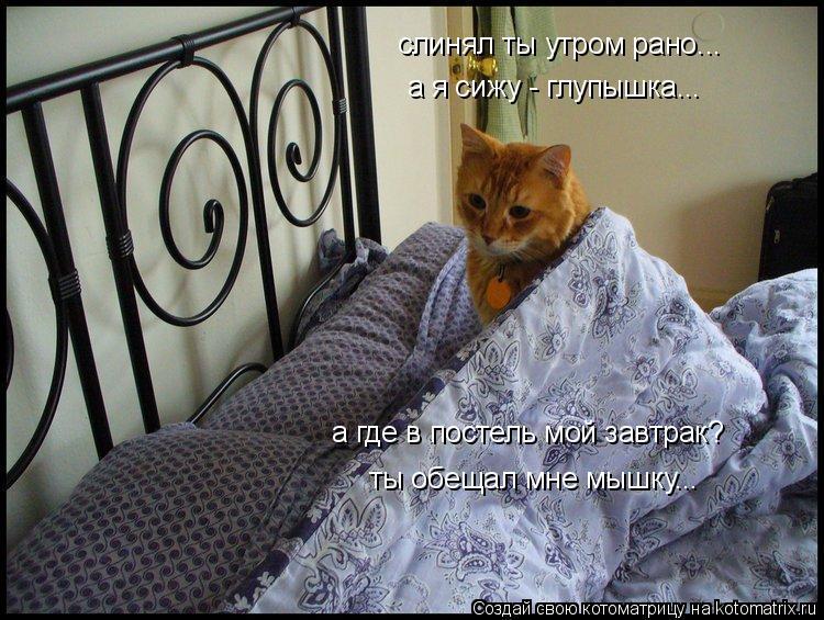Котоматрица: слинял ты утром рано...  а я сижу - глупышка...  а где в постель мой завтрак? ты обещал мне мышку...