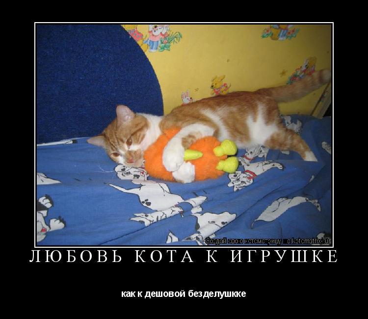 Котоматрица: любовь кота к игрушке как к дешовой безделушкке