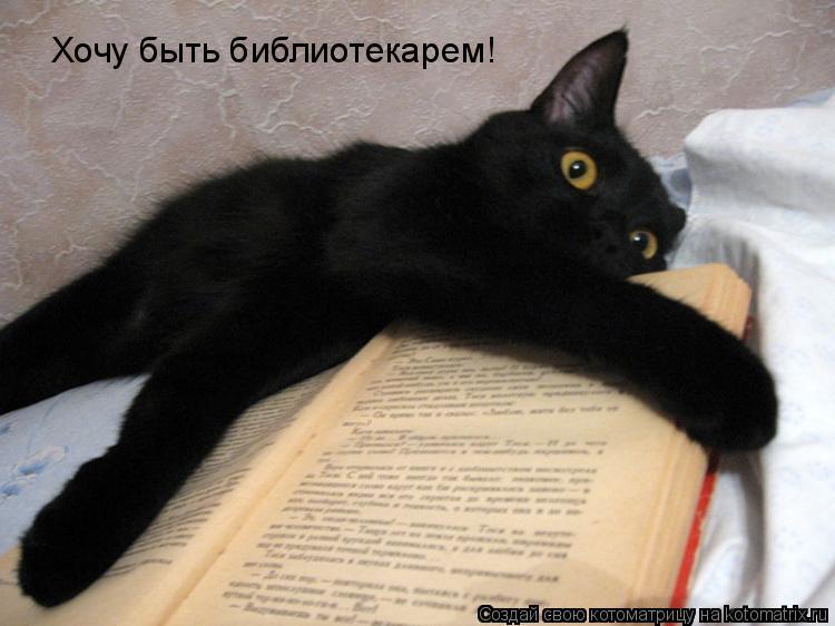 Котоматрица: Хочу быть библиотекарем!