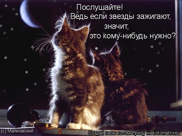 Котоматрица: Послушайте! Ведь если звезды зажигают, значит, это кому-нибудь нужно? (с) Маяковский