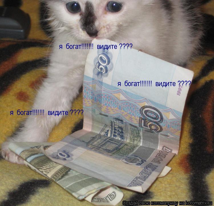 Котоматрица: я  богат!!!!!!!  видите ???? я  богат!!!!!!!  видите ???? я  богат!!!!!!!  видите ????