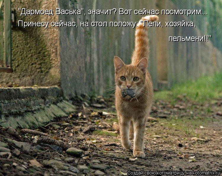 "Котоматрица: ""Дармоед Васька"", значит? Вот сейчас посмотрим... Принесу сейчас, на стол положу: ""Лепи, хозяйка, пельмени!!"""