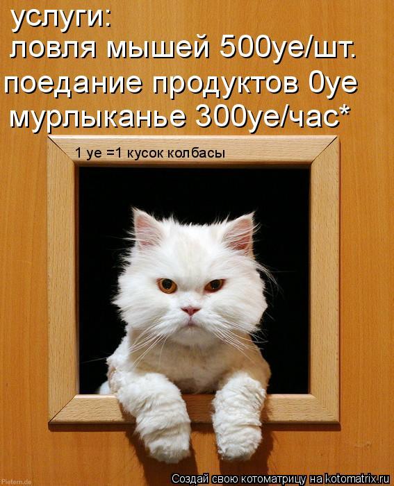 Котоматрица: услуги: ловля мышей 500уе/шт. поедание продуктов 0уе мурлыканье 300уе/час* 1 уе =1 кусок колбасы