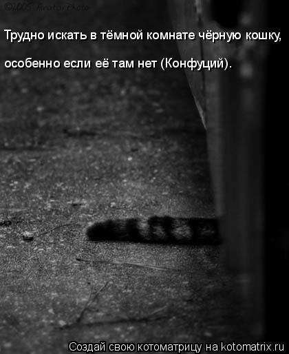 Котоматрица: Трудно искать в тёмной комнате чёрную кошку,  особенно если её там нет (Конфуций).