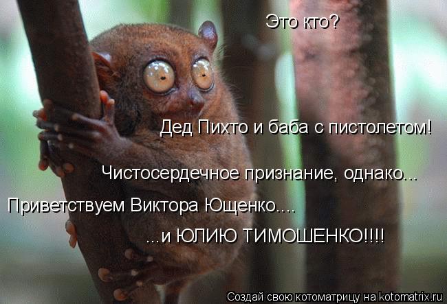 Котоматрица: Это кто? Дед Пихто и баба с пистолетом! Чистосердечное признание, однако... Приветствуем Виктора Ющенко.... ...и ЮЛИЮ ТИМОШЕНКО!!!!