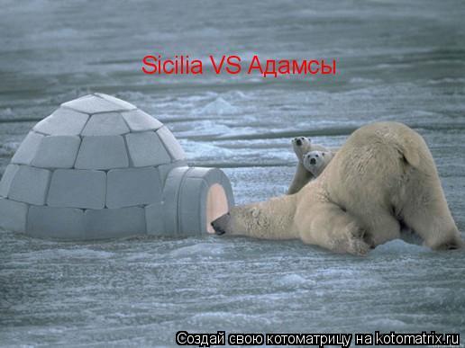 Котоматрица: Sicilia VS Адамсы