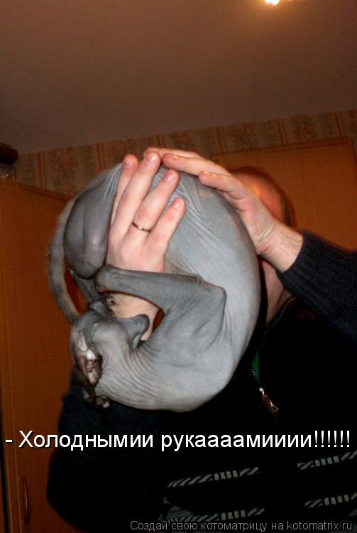 Котоматрица: - Холоднымии рукаааамииии!!!!!!