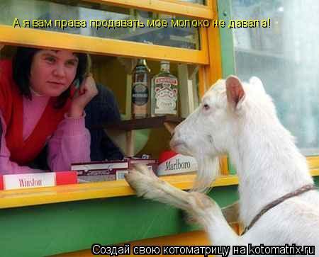 Котоматрица: А я вам права продавать мое молоко не давала!