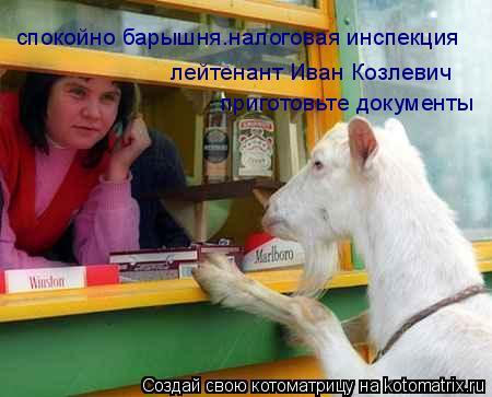 Котоматрица: спокойно барышня.налоговая инспекция лейтенант Иван Козлевич приготовьте документы