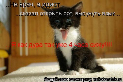 Котоматрица: ...Не врач, а идиот... ...сказал открыть рот, высунуть язык... ...Я как дура так уже 4 часа сижу!!!!