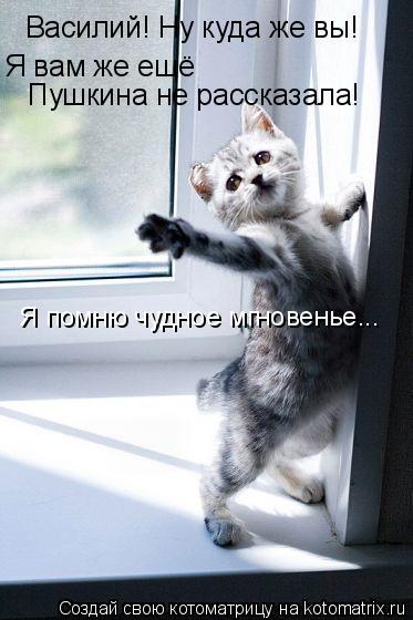 Котоматрица: Василий! Ну куда же вы!  Я вам же ещё Пушкина не рассказала! Я помню чудное мгновенье...