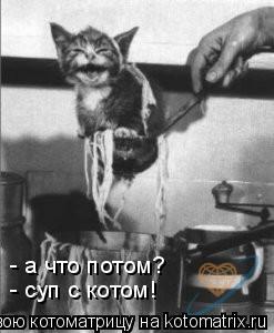 Котоматрица: - а что потом? - суп с котом!