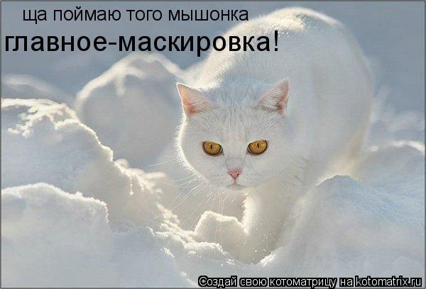 Котоматрица: ща поймаю того мышонка главное-маскировка!