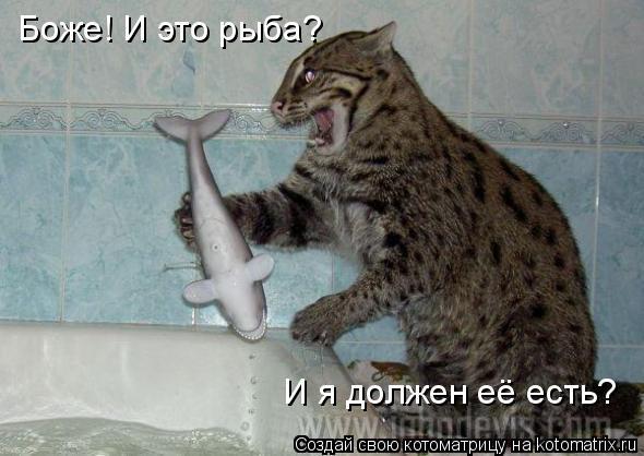 Котоматрица: Боже! И это рыба? И я должен её есть?
