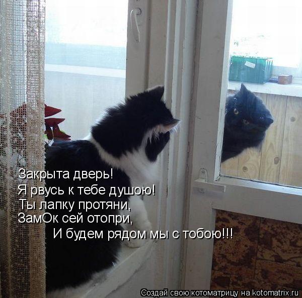 Котоматрица: Закрыта дверь! Я рвусь к тебе душою! Ты лапку протяни, ЗамОк сей отопри, И будем рядом мы с тобою!!!