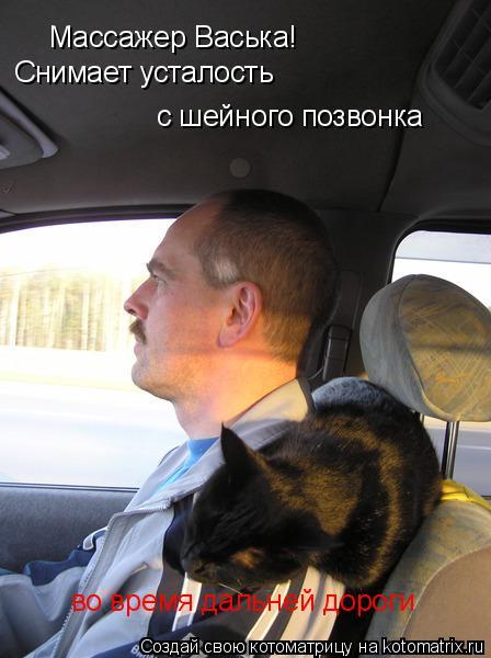 Котоматрица: Массажер Васька! Снимает усталость с шейного позвонка во время дальней дороги