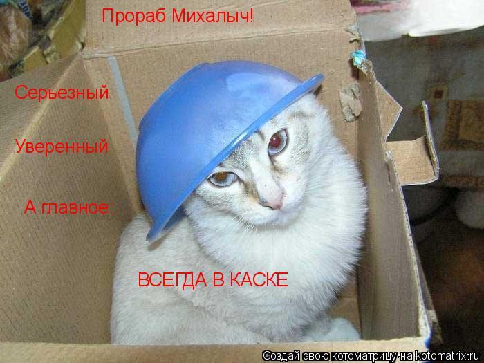 Котоматрица: Прораб Михалыч! Серьезный Уверенный А главное: ВСЕГДА В КАСКЕ