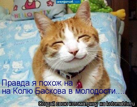Котоматрица: Правда я похож на на Колю Баскова в молодости....