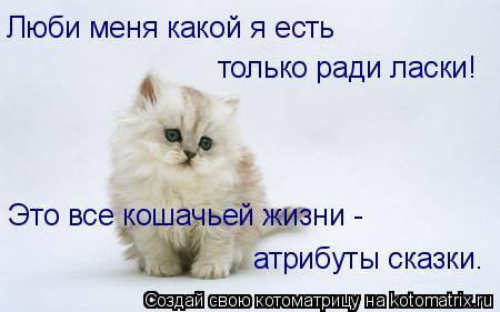 Котоматрица: Люби меня какой я есть только ради ласки! Это все кошачьей жизни - атрибуты сказки.