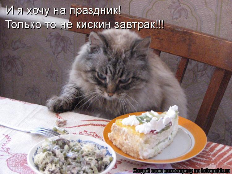 Котоматрица: И я хочу на праздник! Только то не кискин завтрак!!!