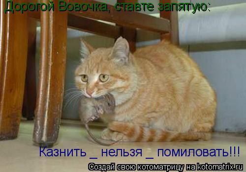 Котоматрица: Дорогой Вовочка, ставте запятую: Казнить _ нельзя _ помиловать!!!