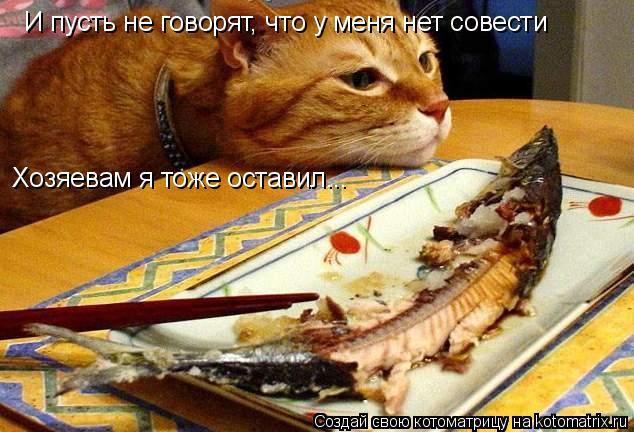 Котоматрица: И пусть не говорят, что у меня нет совести Хозяевам я тоже оставил...