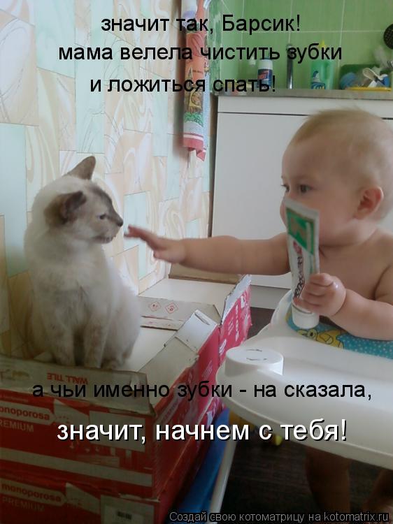 Котоматрица: значит так, Барсик! мама велела чистить зубки и ложиться спать! а чьи именно зубки - на сказала, значит, начнем с тебя!
