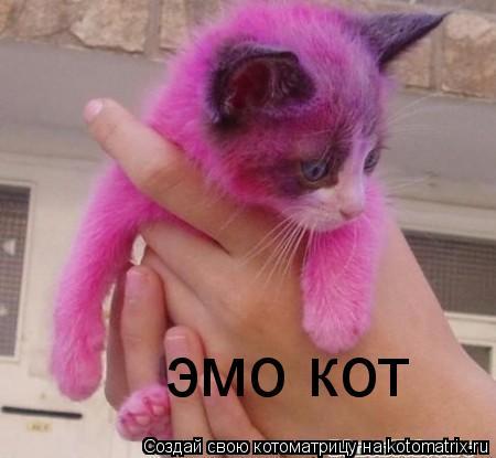 Котоматрица: эмо кот