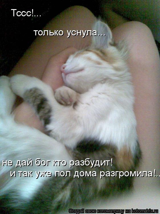 Котоматрица: Тссс!... только уснула... не дай бог кто разбудит!  и так уже пол дома разгромила!..