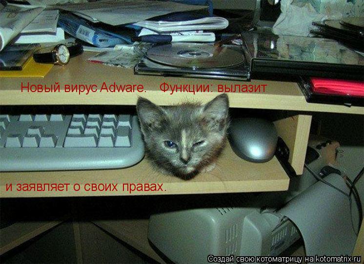 Котоматрица: Новый вирус Adware.  Функции: вылазит и заявляет о своих правах.