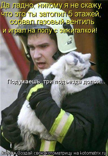 Котоматрица: Да ладно, никому я не скажу, что это ты затопил 5 этажей, сорвал газовый вентиль и играл на полу с зажигалкой! Подумаешь, три подъезда долой...